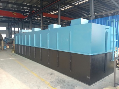 白酒废水处理设备 地埋污水处理设备厂家直销加工定制
